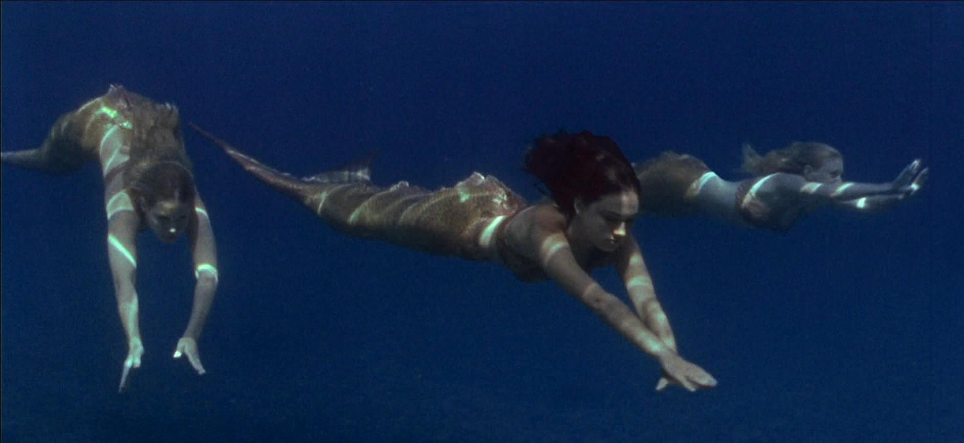 Real Alive Mermaids Body Found | newhairstylesformen2014.com