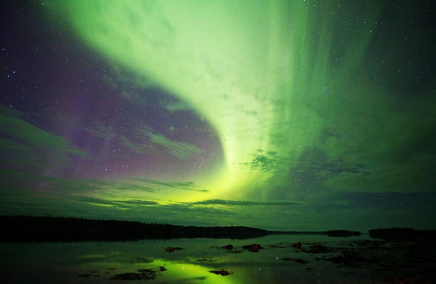 aurora-4