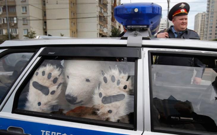 Ακτιβιστής της Greenpeace, ντυμένος σαν πολική αρκούδα, μέσα σε ένα αυτοκίνητο της αστυνομίας, κρατείται έξω από τα γραφεία της Gazprom στη Μόσχα