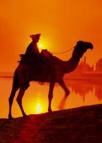 Ο Αλχημιστής – η έρημος