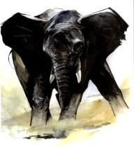 Η ιστορία του υπερόπτη ελέφαντα