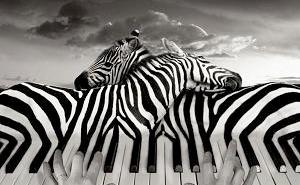 Photo-Manipulations-by-Thomas-Barbey-1st