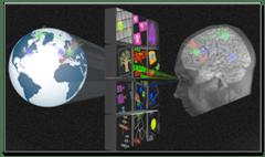 O δείκτης IQ δεν μπορεί να «μετρήσει» μόνος του την ανθρώπινη νοημοσύνη.