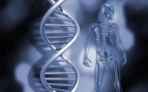 Επιγενετική και ασθένειες: Είμαστε ό,τι… έπαθαν οι πρόγονοί μας;