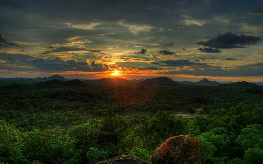 Save Valley Conservancy, Zimbabwe (Αφρική)