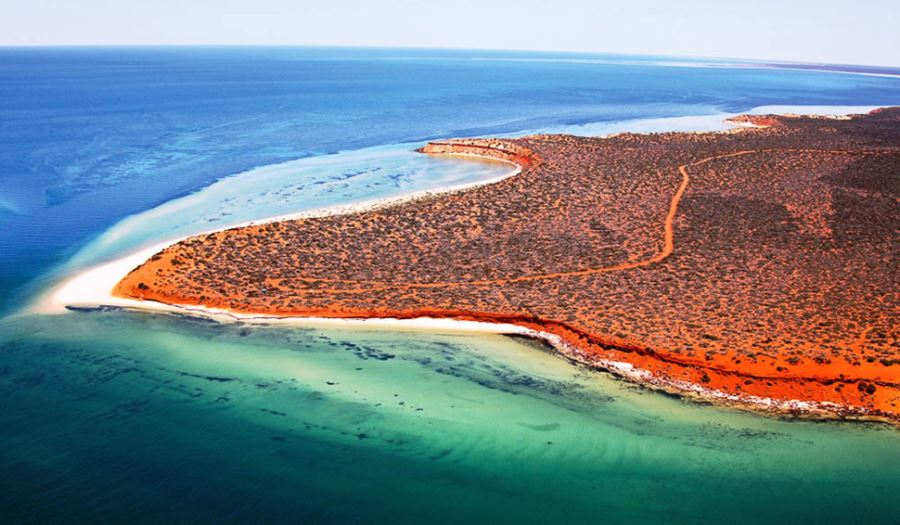 Shark Bay, Δυτική Αυστραλία