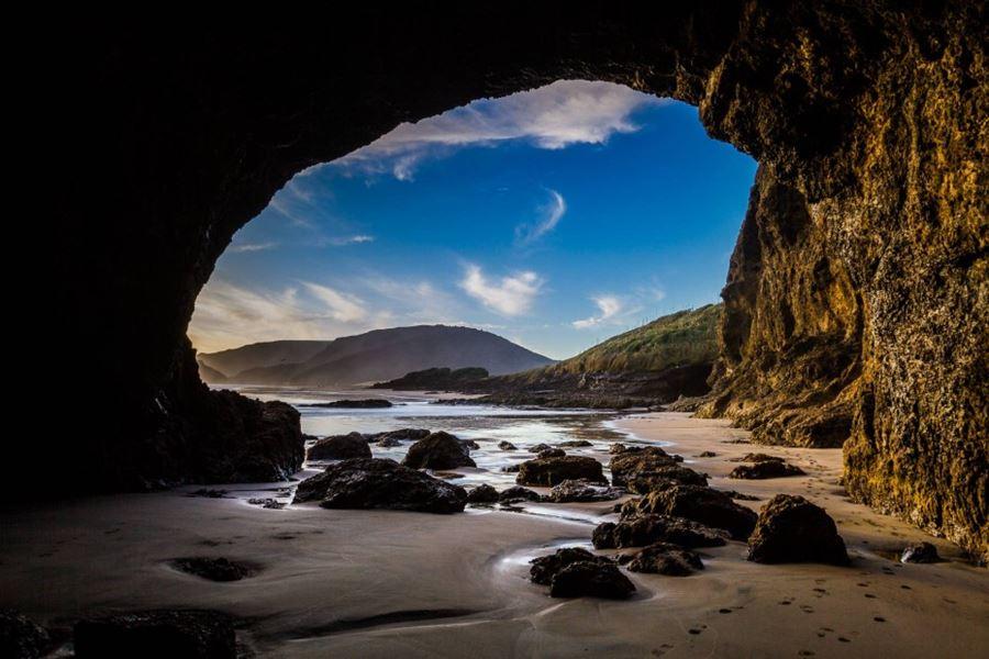 Παραλία Te Henga, Νέα Ζηλανδία
