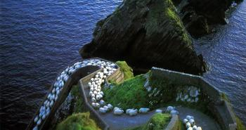 sheep-herds-around-the-world
