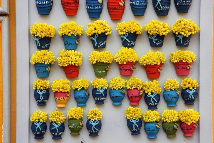 Κύθηρα: Το κίτρινο αμάραντο λουλουδάκι σεμπρεβίβα (σημαίνει «πάντα ζωντανή») είναι το σήμα κατατεθέν του νησιού και θα το δείτε να στολίζει κάθε είδους αναμνηστικό