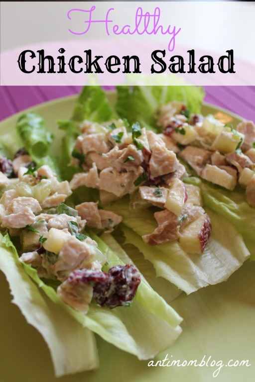 Healthy Chicken Salad Recipe - The Anti Mom Blog
