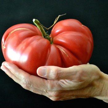 Big Tomato An Unrefined Vegan