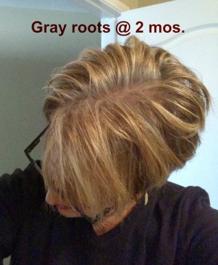 Gray roots @ 2 mos
