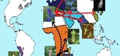 Biogeography of subfamily Hyacinthoideae