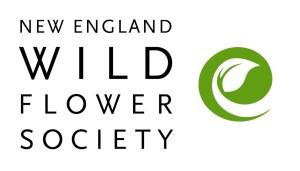 New England Wildflower Society