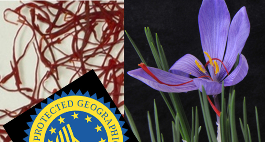 Crocus, saffron-omics and the highest value crop