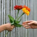 hand-1549224_640