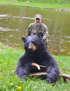 Bear Hunting - New Brunswick Canada Taxis River Outfitters