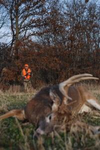 North Missouri Buck
