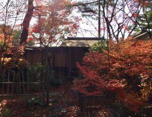 茶室の紅葉、茶室から待合を見る。