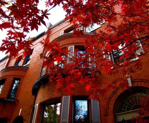 Autumn_Brownstones_by_Ryser915