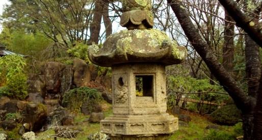 A Hidden Sanctuary in SF: The Japanese Tea Garden