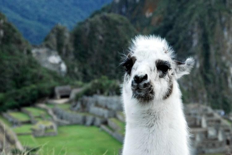 What to do in Peru (after you've hiked Machu Picchu) | www.apassionandapassport.com