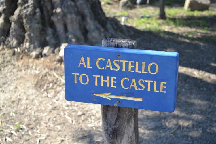 al castello napa valley