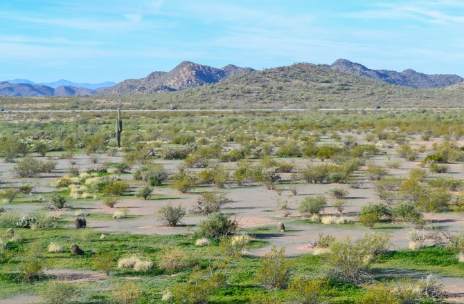 A Long Weekend in Scottsdale Arizona: The Best of the Southwest