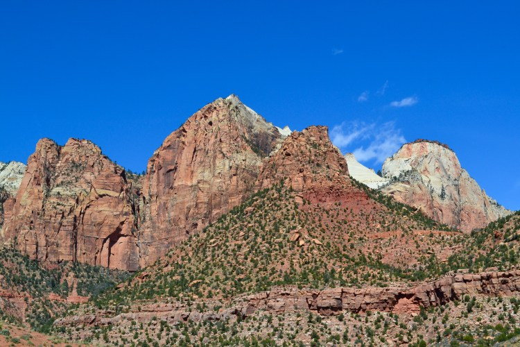 zion national park-7