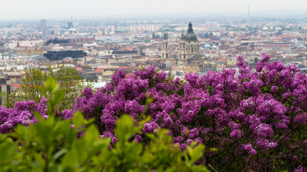 15 Best Things to Do in Budapest