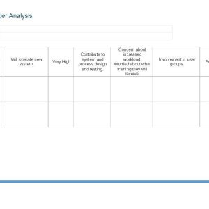 stakeholder analysis template ape project management. Black Bedroom Furniture Sets. Home Design Ideas