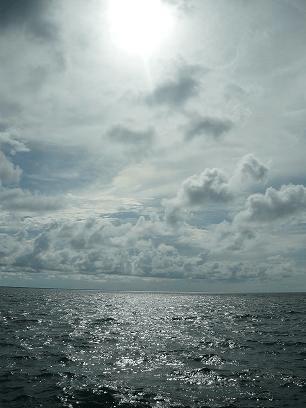 underwater-welder-api