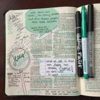 Journaling Bible   Adam's Descendants