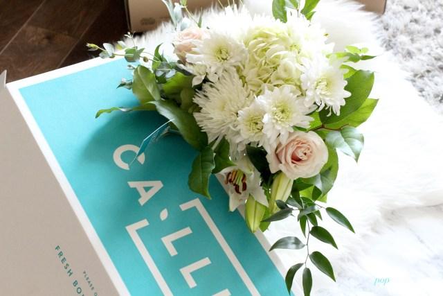 Callia flowers