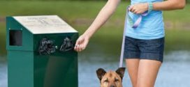Ways to choose the right dog waste station