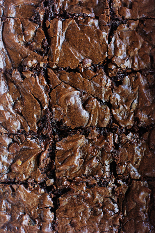 Salted Caramel Lava Brownie Cake