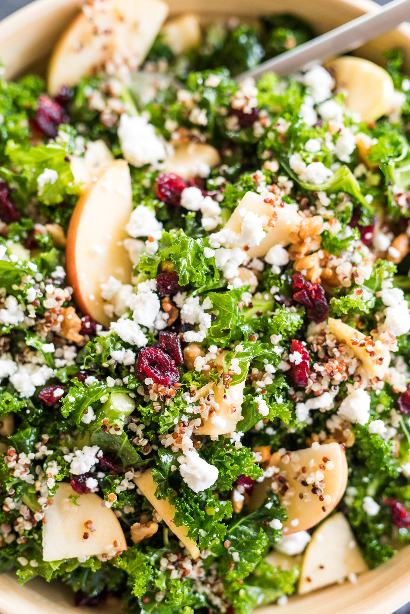 The Perfect Fall Quinoa Salad- all of your favorite fall flavors in one salad! Delicious, easy, and super healthy!