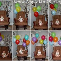 Baby's First Year  Monthly Baby Photos