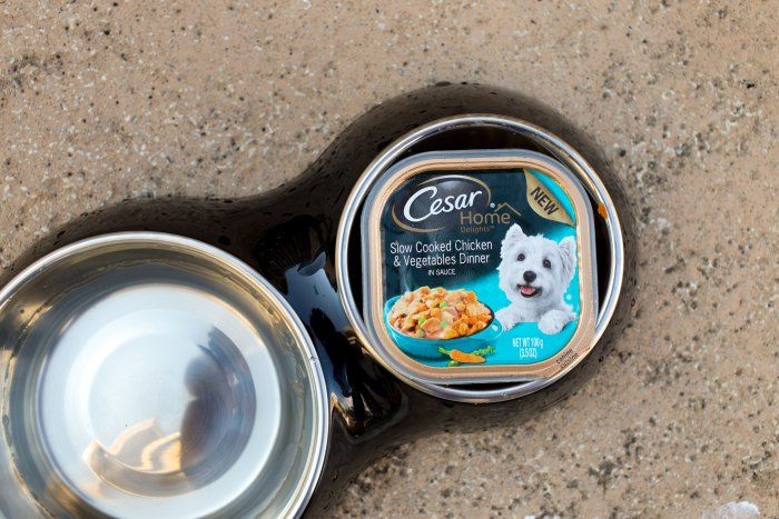 Cesar Home Delights Slow Cooked Chicken