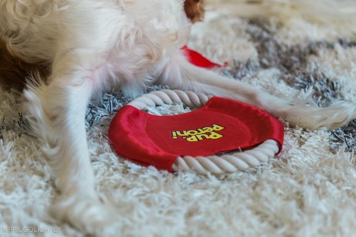 Pup peroni toys