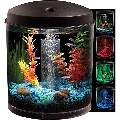 Fish Aquarium Kit : Confident Aspects Of Building An Aquaponics System