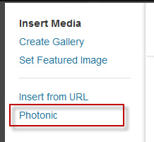 "Click on the new ""Photonic"" tab"