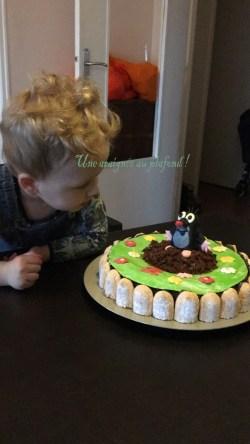 gâteau petite taupe