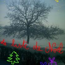 04-03-06-10h-neige3