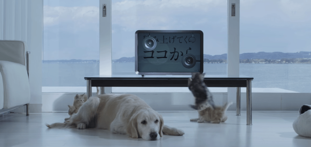 """Watch Ai Otsuka's simple, but adorable MV for """"Starting Pistol"""""""