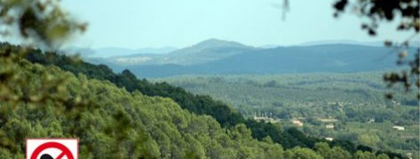 Massifs_Forestiers
