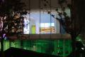 Irish Pavilion - Shanghai Expo 2010