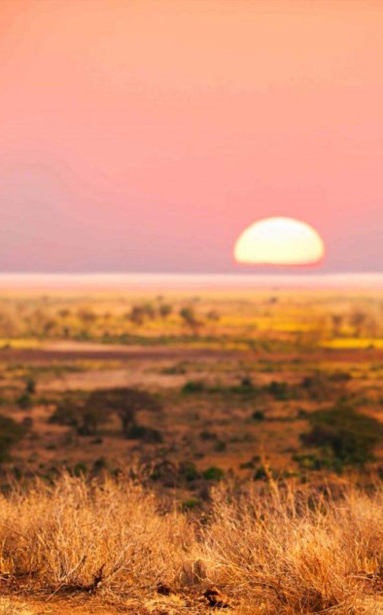 Eczellon-Cover-Masai-1-1024×632
