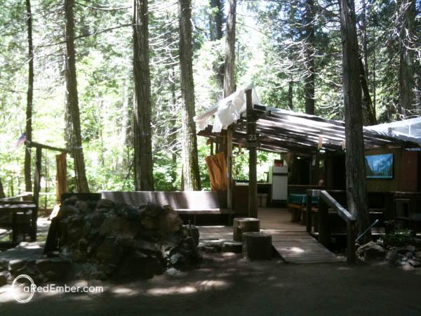 redwood-25-2