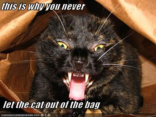 catoutofbag